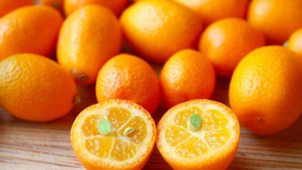 kumquat, fruit, smoothie, recipe, nutrition, cooking, healthy, fruit, vodka, vitamins, garden,