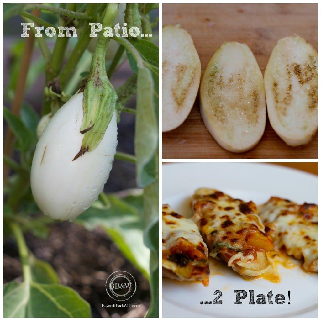 P2p collage eggplant